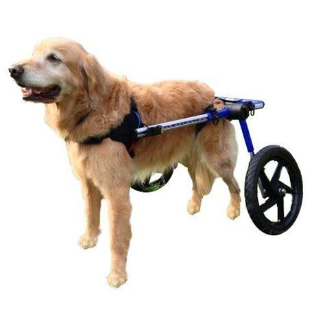 how to make a wheelchair 17 mejores ideas sobre wheelchair en cuidado de perro delicias de