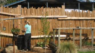 Exciting wooden fence at large backyard decorated with