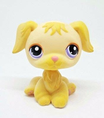 lps golden retriever 17 best images about for sale on hamsters fisher price and perler