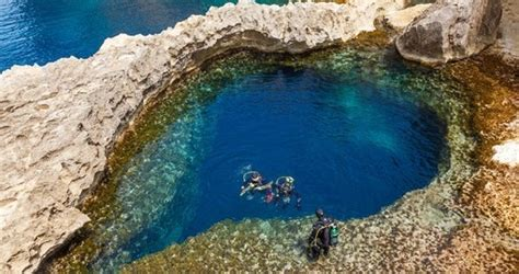 underwater malta why work in an office books malta nature and wildlife goway