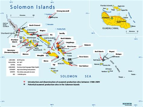 solomon islands map sustainable seaweed farming in solomon islands kslof living oceans foundation