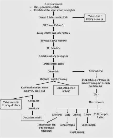 format laporan asuhan keperawatan laporan pendahuluan thalasemia