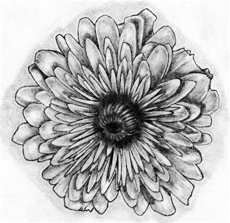 november birth flower tattoo november flower by bobby castaldi on deviantart