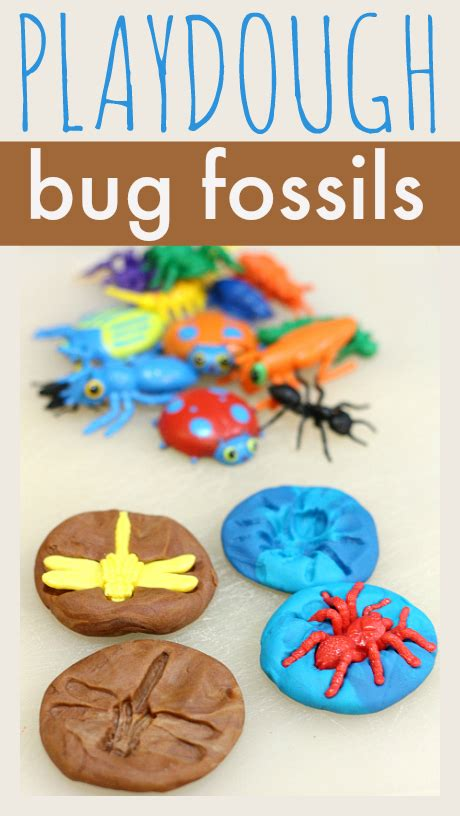 cards crafts kids projects 7 1 11 8 1 11 playdough bug fossils fossils zoology and homeschool