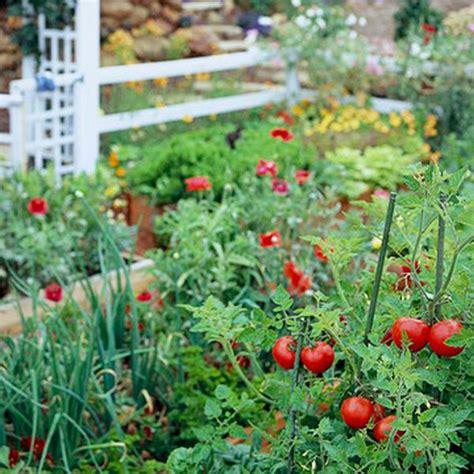 Vegetables For Home Garden Fresh Vegetables Garden Tomatoes Onions Wonderfuldiy