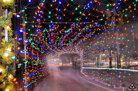 Lights Orlando by The 24 Best Ways To See Amazing Lights In Orlando