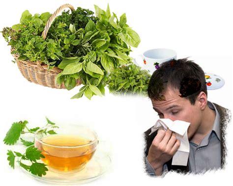 imagenes tratamientos naturales remedios caseros naturales populares y efectivos