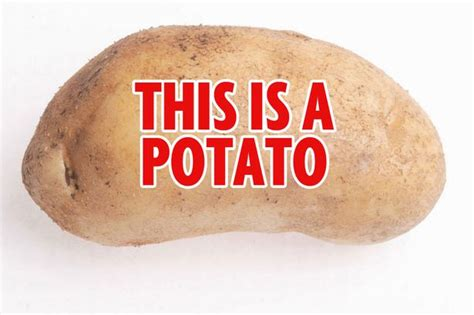 what is potato quot what s a potato quot ruins dinner with s