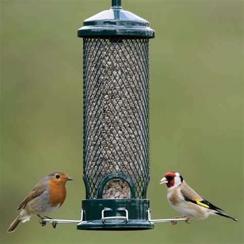 squirrel proof buster mini seed feeder rspb wild bird