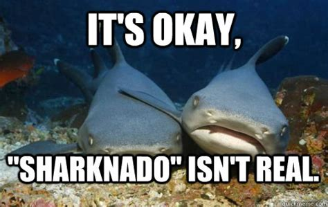 Sharknado Meme - sharknado as it happened 183 the daily edge