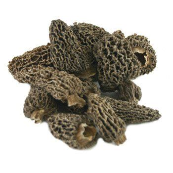 morel mushrooms french dried 16 oz. – buy at marky's