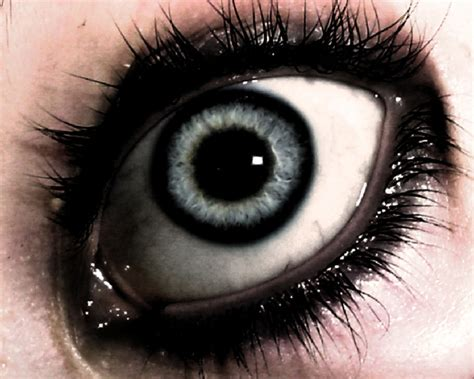 imagenes reales de ojos tipos de ojos
