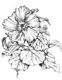 habrumalas orchid tattoo stencil images