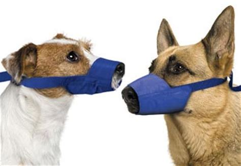 Kong Beds Quick Muzzle For Dogs Nylon Muzzle For Biting