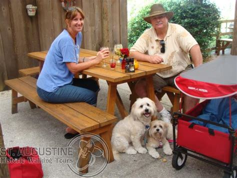 pet friendly places  st augustine totally st