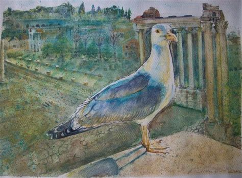 il gabbiano uccello uccello gabbiano ai fori imperiali roma ad acquerello