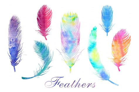 watercolor feathers png and eps file web elements