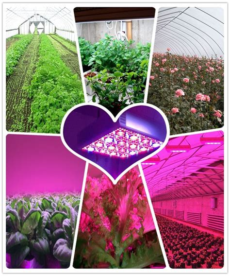 Used Grow Lights by Factory Direct Greenhouse Used Grow Lights Wholesale High