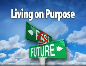 purpose of purpose definition what is