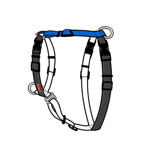 balance harness summer must haves for dogs continues this week snack duo popware for pets by dexas