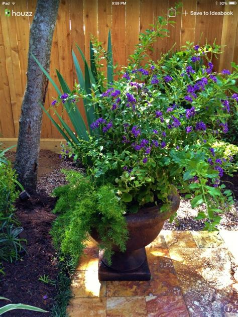 flower pot arrangement ideas for back yard pinterest