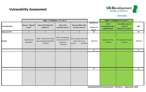 vulnerability assessment template qs development