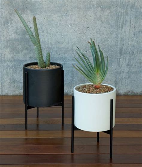 case study cylinder plant pot with stand modernica pot pin by leslie abitz on for the home pinterest