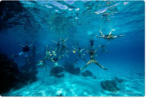 clearest ocean water in the world fijian blues aquabumps
