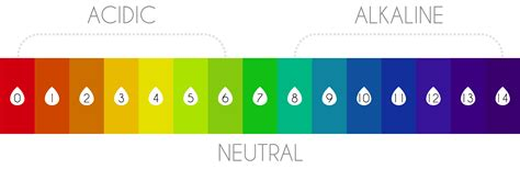 ph chart why ph matters to your overall health