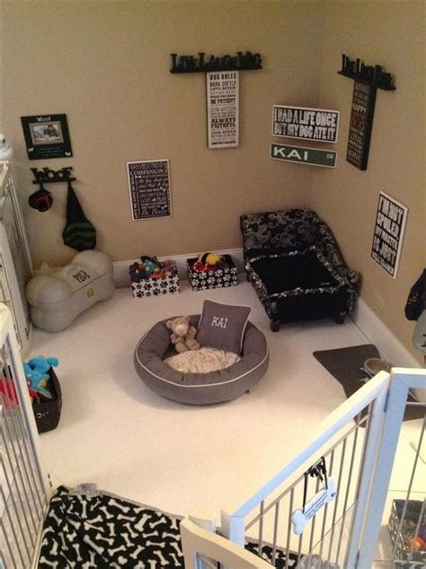 puppy crate in bedroom or not cleaned and rearranged furniture maltese dog room