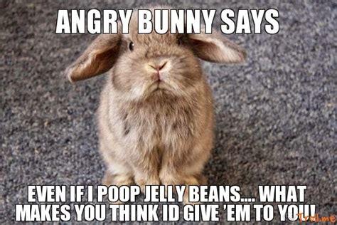Angry Bunny Meme - angry bunny says funny meme