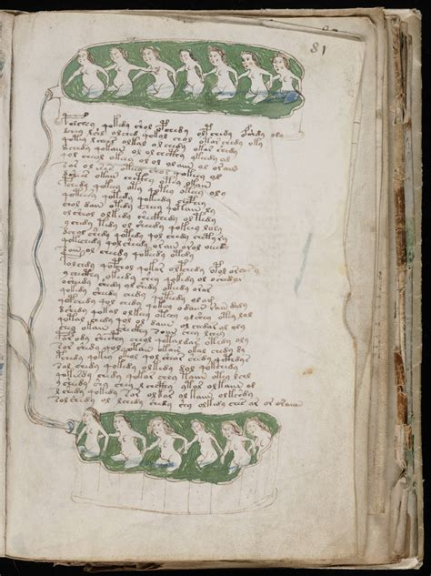 A Manuscript To Die For the voynich gallery the complete manuscript 4