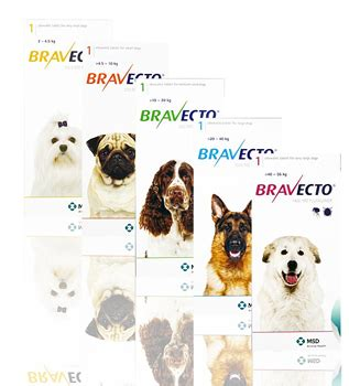 bravecto for dogs reviews bravecto chewable tablets for dogs