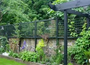 garden trellis screening best 20 garden screening ideas on