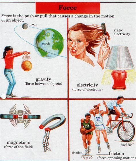 On Science Forces And Motion grade 2 and motion physical science