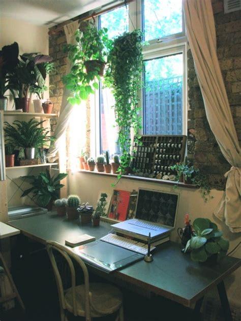 studio plants desk cacti katie scott
