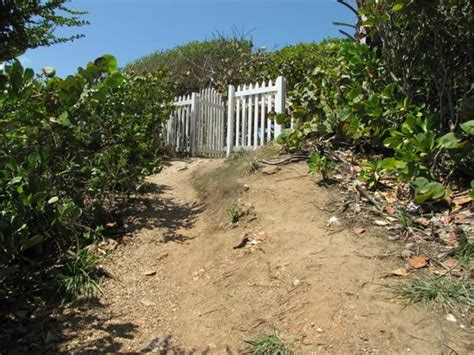 houses in toco rates salybia picture of galera point toco lighthouse