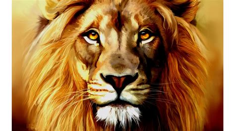 artful lion 4k wallpaper free 4k wallpaper
