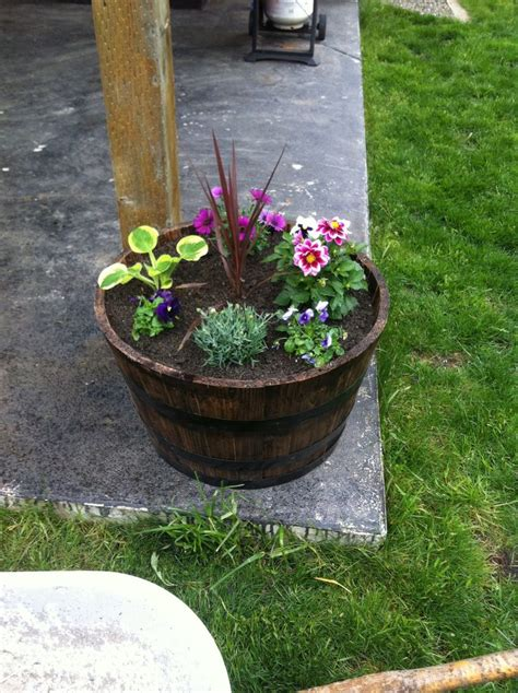 wine barrel planter ideas whiskey barrel planters outdoor ideas