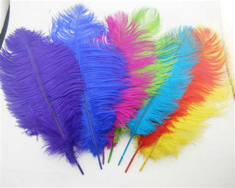 feather for sale 12x high quality fluffy dyed ostrich