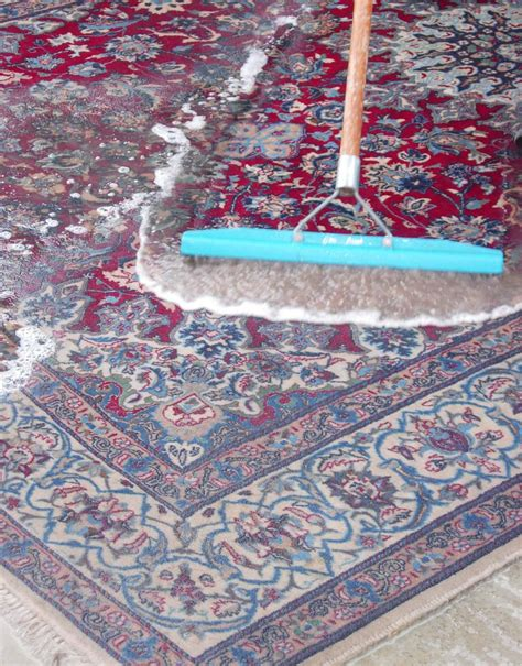Cleaning An Area Rug Rug Cleaning Rugs Area Rugs