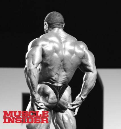 xmas tree lower back 12 muscle insider
