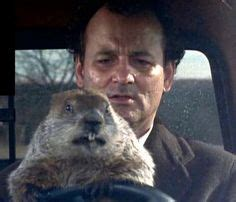 groundhog day quotes booties 1000 ideas about ned ryerson on groundhogs