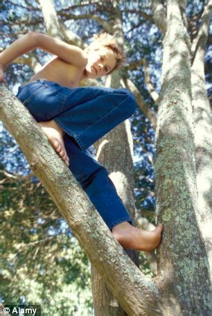 boat house cotton tree why stopping children from climbing trees and playing in