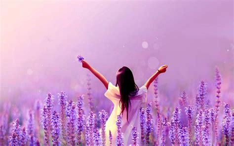 tapete lavendel lavender flower wallpapers wallpaper cave