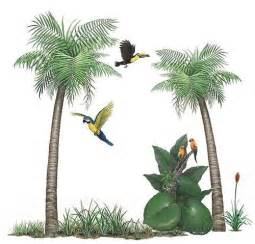 palm tree wall murals pics photos wall mural quot palm tree