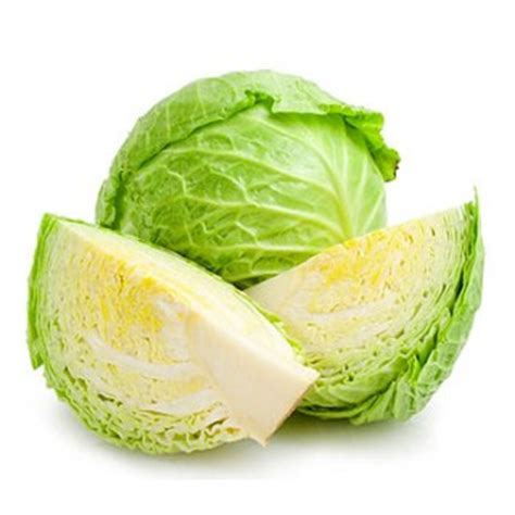 is cabbage for dogs can i give my cabbage benefits of dogs consuming cabbage