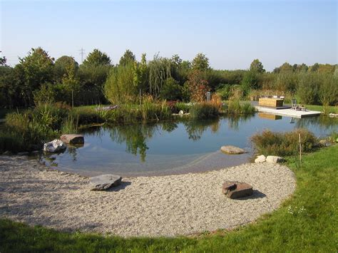 natural pool natural swimming pools becoming more popular in the us