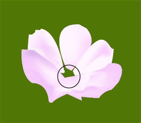 tutorial vector flower illustrator tutorial vector flowers illustrator