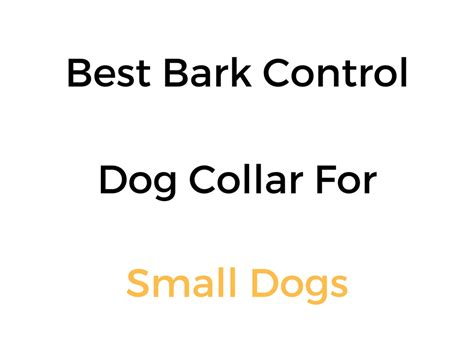 bark collar for small dogs best bark no bark collars for small dogs